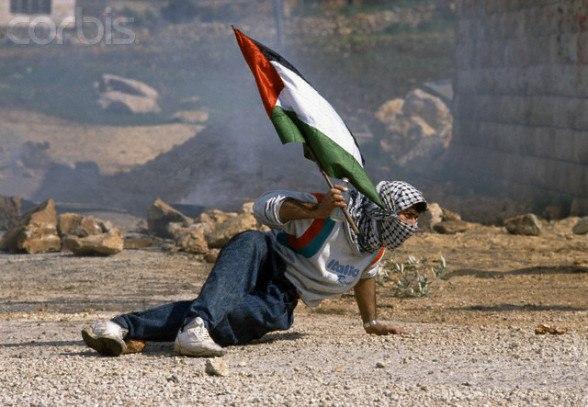 Protester Holding Flag During First Intifada